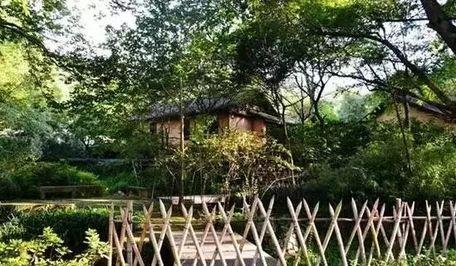 竹林房子风景图